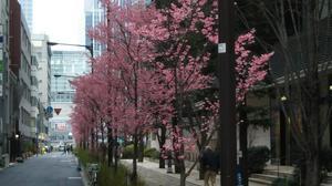 東京スクエア.JPG